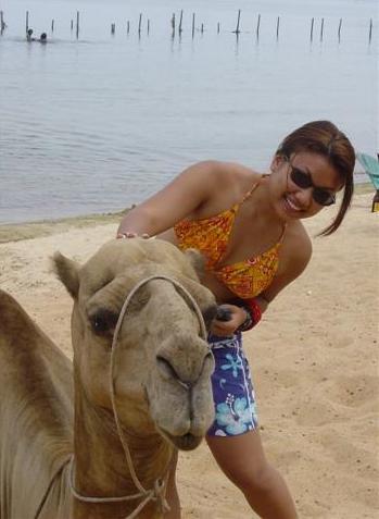 camel nile