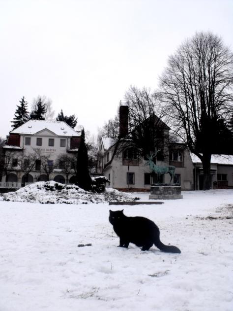snowy walk3